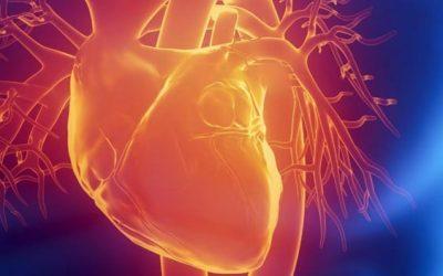 Reconocer una parada cardiorrespiratoria y aplicar a tiempo la RCP puede salvar vidas